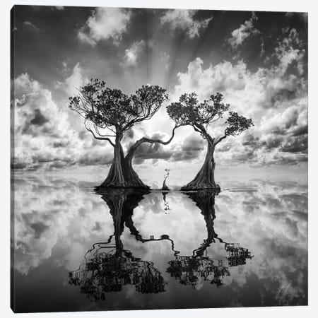 Mangrove Trees I Canvas Print #KFD93} by Kathrin Federer Art Print