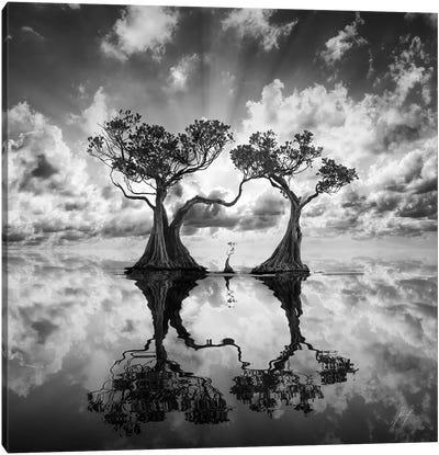 Mangrove Trees I Canvas Art Print