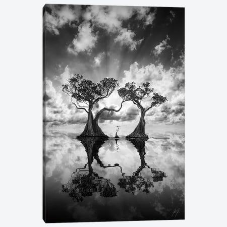 Mangrove Trees II Canvas Print #KFD94} by Kathrin Federer Canvas Artwork