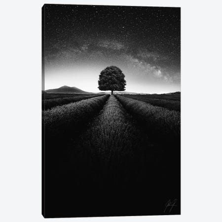 Compelling I Canvas Print #KFD9} by Kathrin Federer Canvas Wall Art