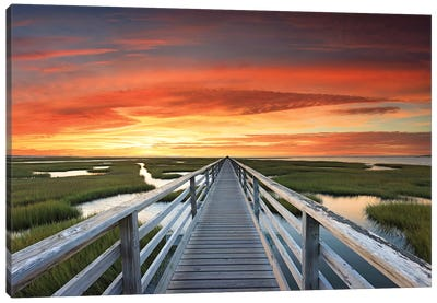 Greys Beach Sunset Canvas Art Print