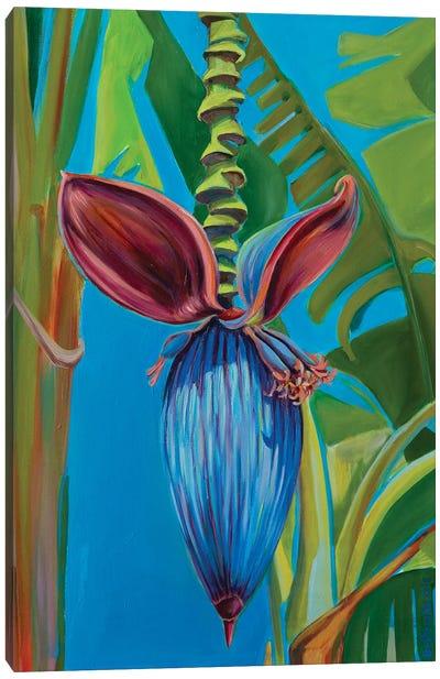 Banana Flower Canvas Art Print