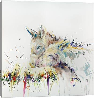 Snuggle Buddys Donkey Canvas Art Print