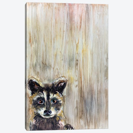 Baby Raccoon Canvas Print #KGU17} by Kim Guthrie Canvas Art