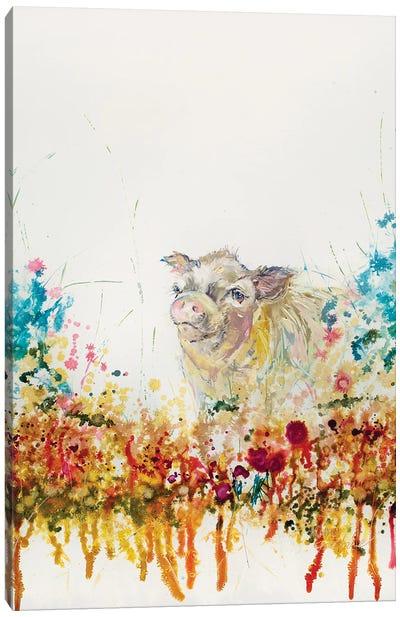 Mini Pig Canvas Art Print