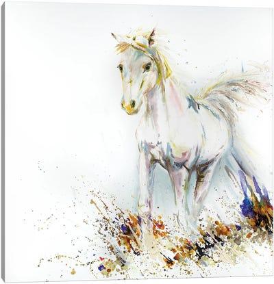 White Horse Starfire Canvas Art Print