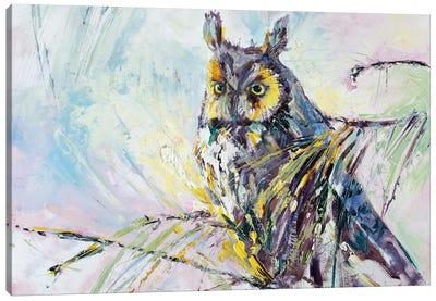 Serenity Owl Painting Canvas Art Print