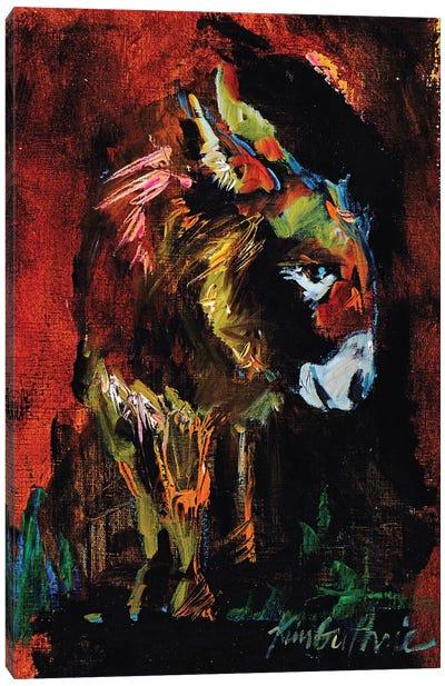 Donkey Boy From The Farm Canvas Art Print