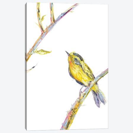 Bird Painting Of A Wilsons Warbler Canvas Print #KGU35} by Kim Guthrie Canvas Art