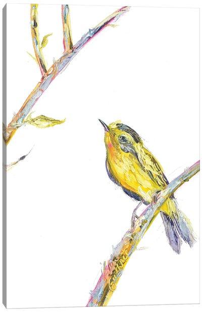 Bird Painting Of A Wilsons Warbler Canvas Art Print