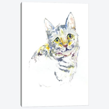 Kitty Cat Portrait Canvas Print #KGU40} by Kim Guthrie Canvas Artwork