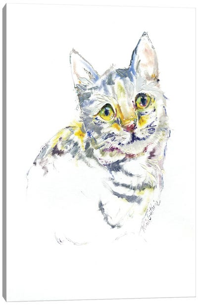 Kitty Cat Portrait Canvas Art Print