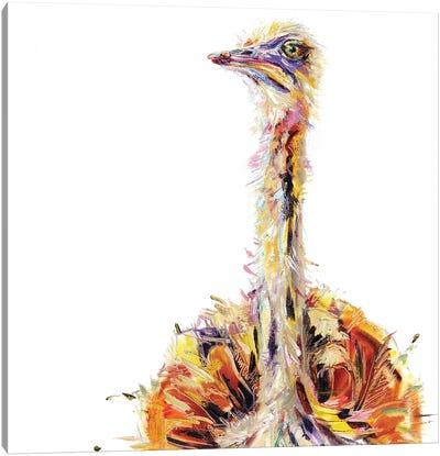 Ostrich Bird Oil Canvas Art Print