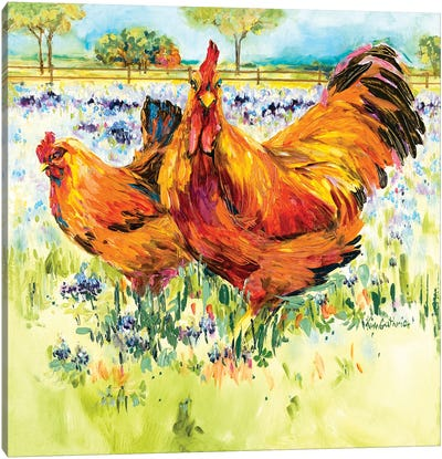 Chicken And Rooster Frolic In Texas Bluebonnets Canvas Art Print