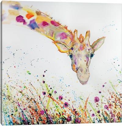 Peek A Boo Giraffe Oil Canvas Art Print