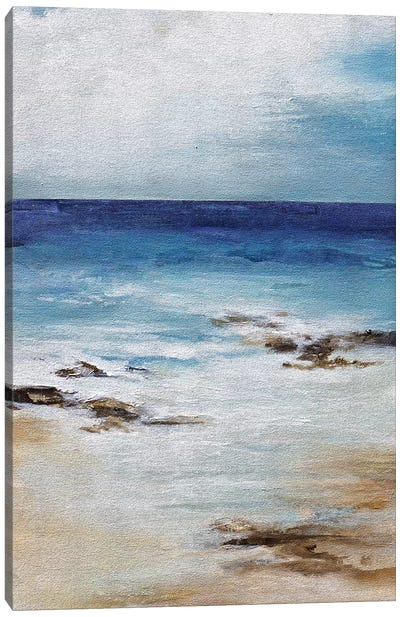 Salt Air Canvas Art Print