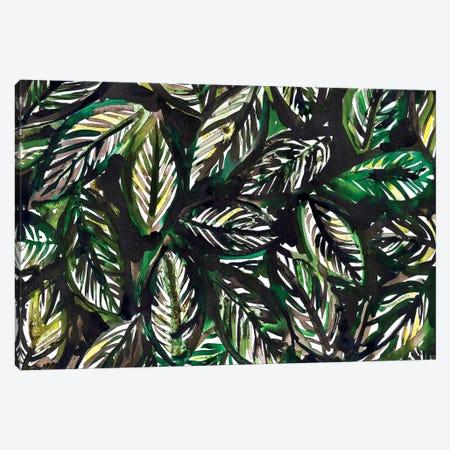 Tropical Leaves Canvas Print #KHR187} by Kahri Canvas Print