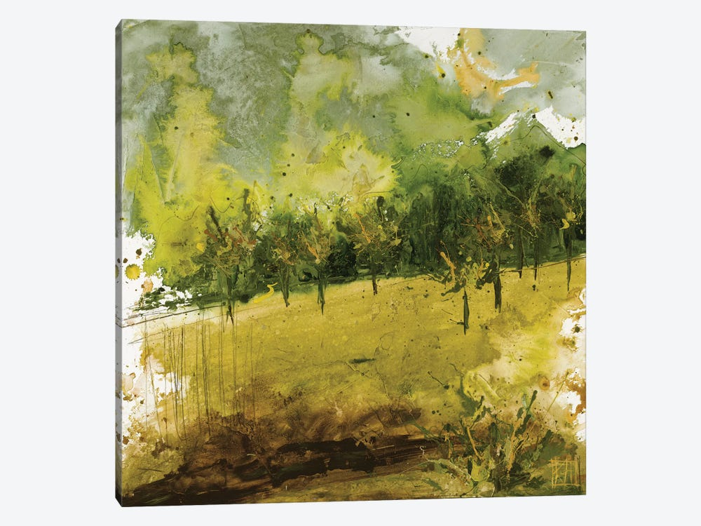 Griffith Park II by Kelsey Hochstatter 1-piece Canvas Artwork