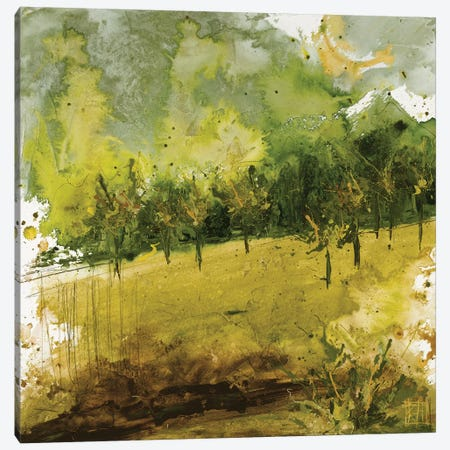 Griffith Park II Canvas Print #KHS33} by Kelsey Hochstatter Art Print