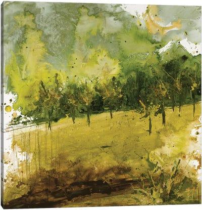 Griffith Park II Canvas Art Print