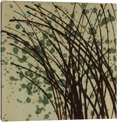 Wind & Rain XIV Canvas Art Print