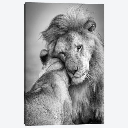African Love! Canvas Print #KHT3} by Ali Khataw Canvas Art Print