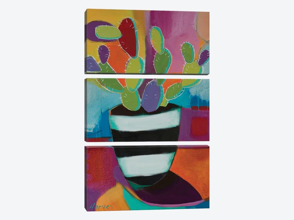 Prickly Pot by Kristin Harvey 3-piece Canvas Artwork
