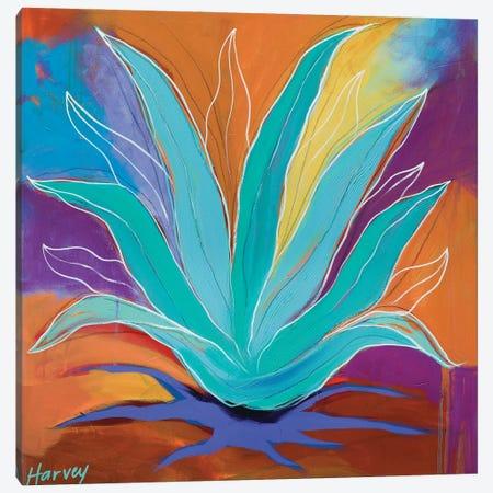 Agave Dreams Canvas Print #KHV2} by Kristin Harvey Canvas Art Print