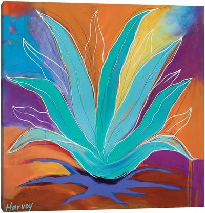 Agave Dreams Canvas Art Print