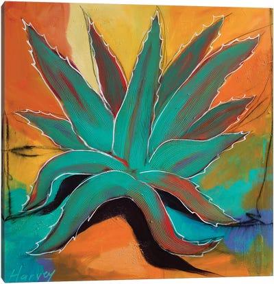 Rainbow Agave Canvas Art Print