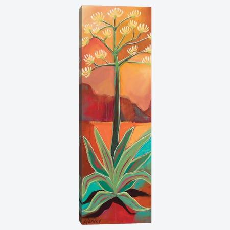 Century Plant Canvas Print #KHV40} by Kristin Harvey Canvas Print