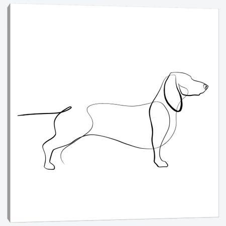 Dachshund Canvas Print #KHY14} by Dane Khy Canvas Artwork