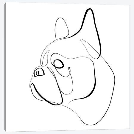 French Bulldog I Canvas Print #KHY23} by Dane Khy Canvas Artwork