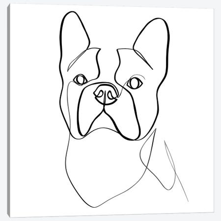 French Bulldog II Canvas Print #KHY24} by Dane Khy Canvas Print