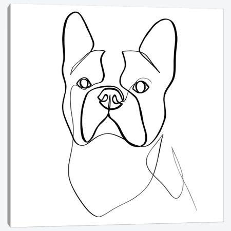 French Bulldog II Canvas Print #KHY24} by Dane Khy Canvas Print