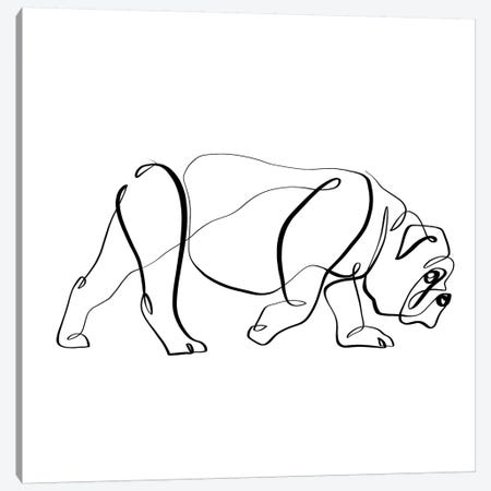 Bulldog I Canvas Print #KHY7} by Dane Khy Canvas Print