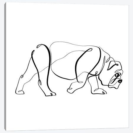 Bulldog I Canvas Print #KHY7} by Dane Khy Canvas Print