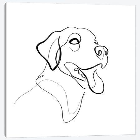 Black And Brown Lab Dog Canvas Print #KHY86} by Dane Khy Canvas Print