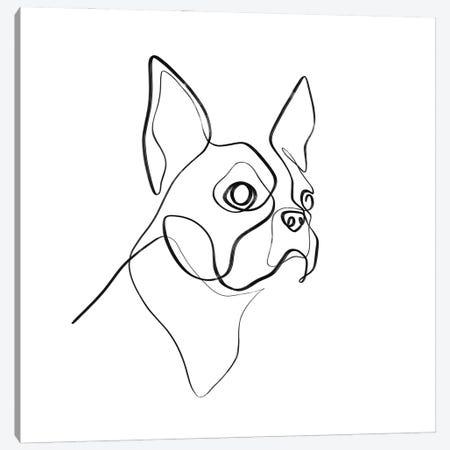 Boston Terrier Portrait Canvas Print #KHY87} by Dane Khy Art Print