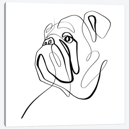 Bulldog II Canvas Print #KHY8} by Dane Khy Canvas Artwork