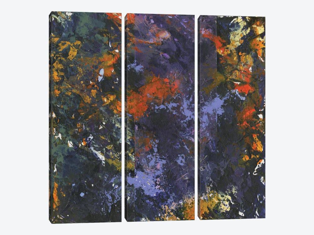 Revel by Kimberly Abbott 3-piece Canvas Artwork
