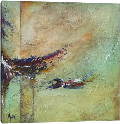 Tempestuous Canvas Art Print