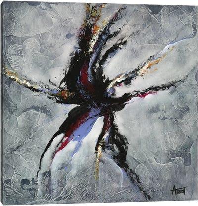 Evolve Canvas Art Print