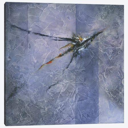 Inspirit Canvas Print #KIA8} by Kimberly Abbott Canvas Art