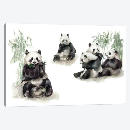 Pandas Canvas Print #KIB21} by Kira Balan Canvas Artwork