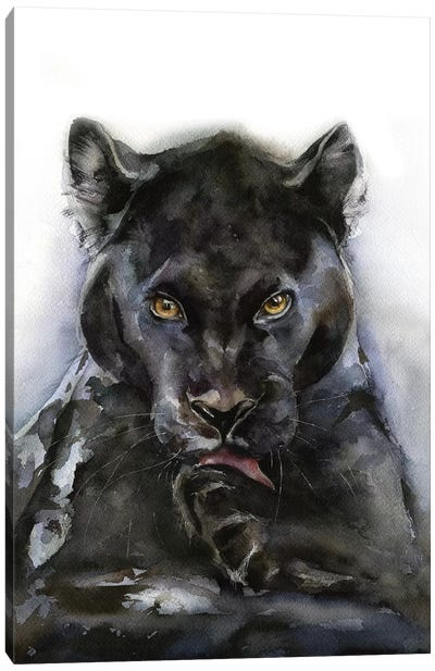 Panther Canvas Art Print