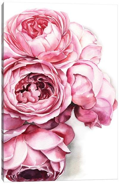 Peony Canvas Art Print