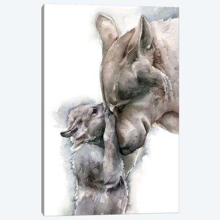 Wolves Canvas Print #KIB30} by Kira Balan Art Print