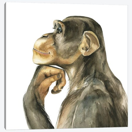 Monkey Canvas Print #KIB34} by Kira Balan Canvas Art