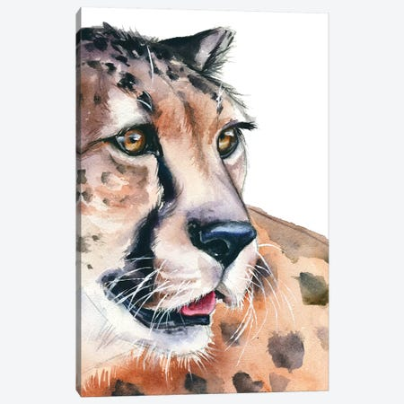 Cheetah Canvas Print #KIB39} by Kira Balan Canvas Art Print